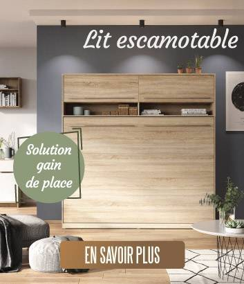 Solution gain de place : le lit armoire escamotable !